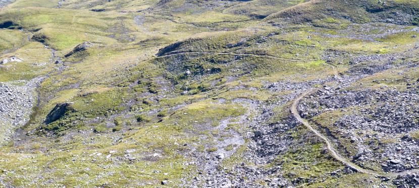 Trailbuilding