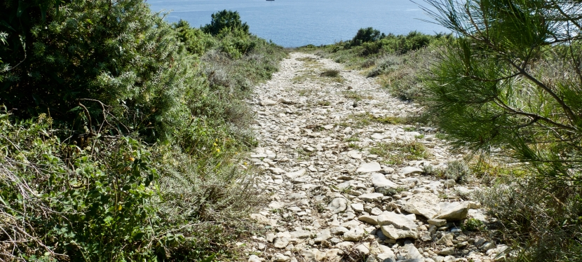La Strada della Malvasia: FinisTerrae