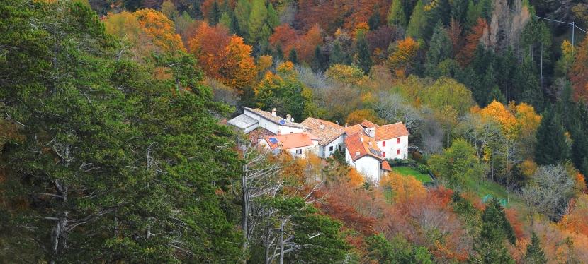 Monticello Elettrico